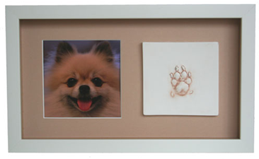 small paw print with square photo