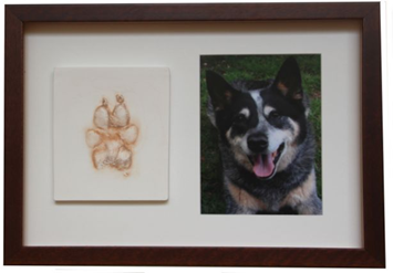 medium paw print with portrait photo