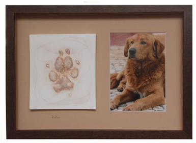 large paw print with portrait photo